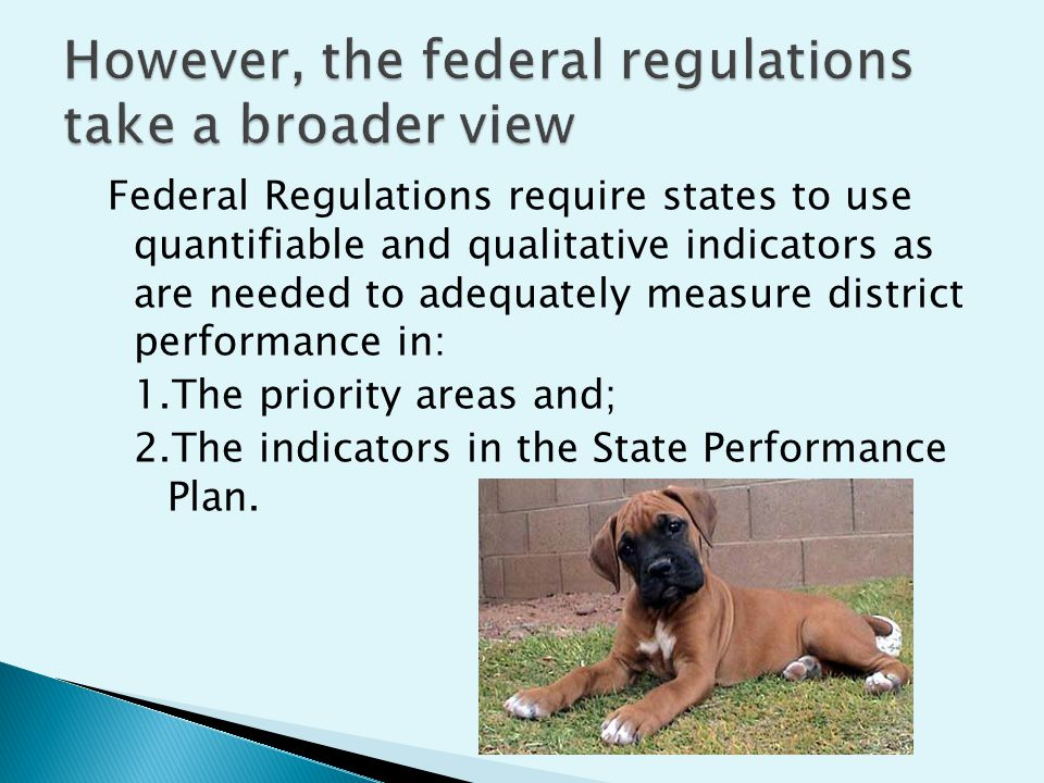 Federal Regulations require states to use quantifiable and qualitative indicators as are needed to adequately measure district performance in: 1.The priority areas and; 2.The indicators in the State Performance Plan.