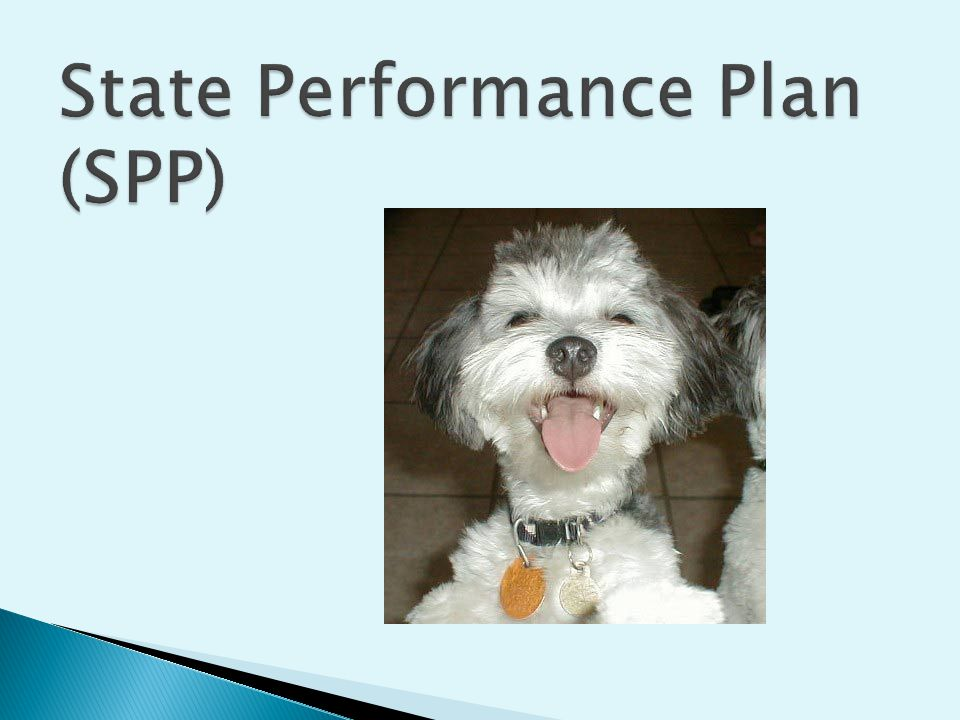 Beginning in 2005, each State had to develop a State Performance Plan the details how the State will implement the requirements of the IDEA and how the State will measure improvement.