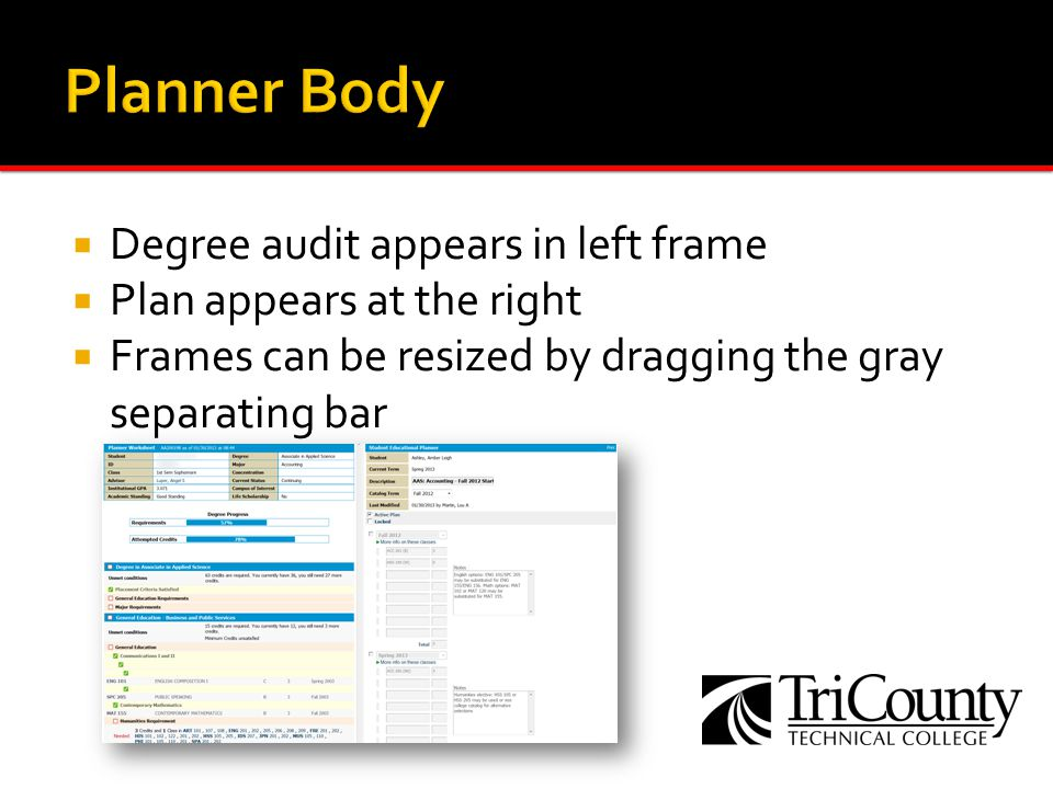 Degree audit appears in left frame Plan appears at the right Frames can be resized by dragging the gray separating bar