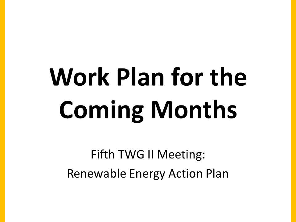 Work Plan for the Coming Months Fifth TWG II Meeting: Renewable Energy Action Plan
