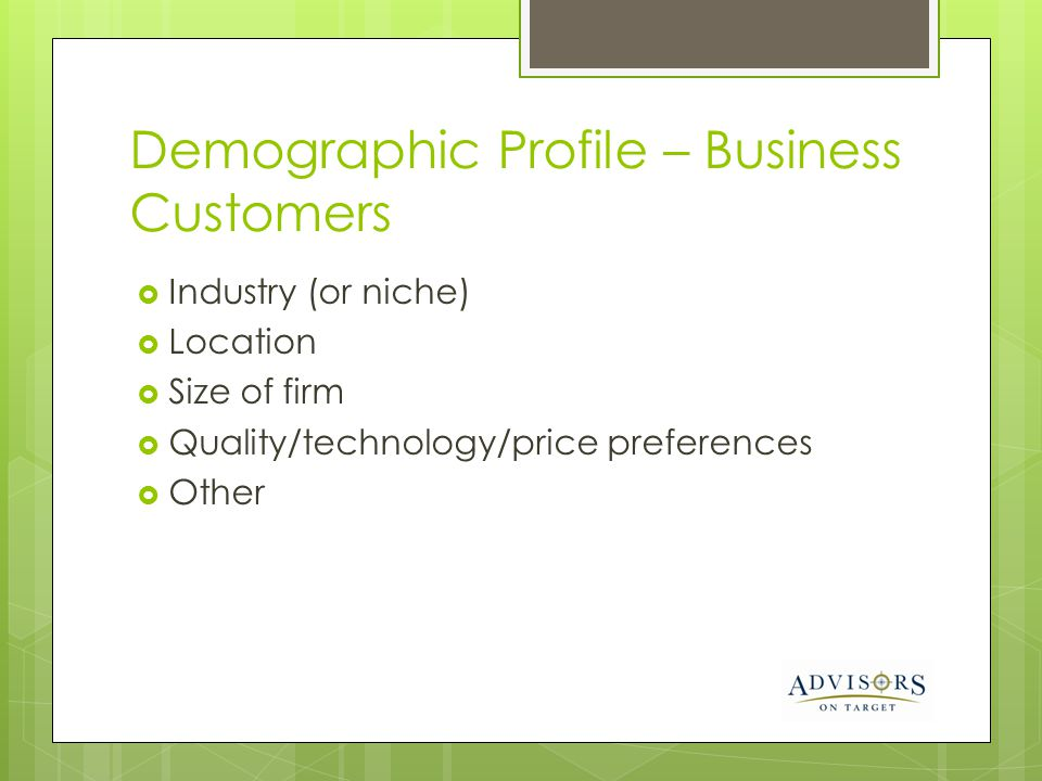 Demographic Profile – Business Customers Industry (or niche) Location Size of firm Quality/technology/price preferences Other