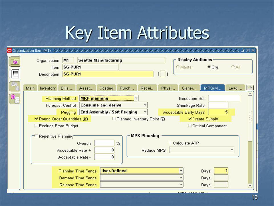 10 Key Item Attributes