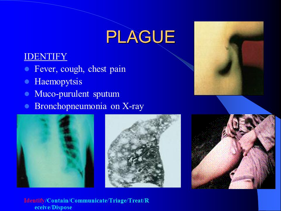 PLAGUE Gram negative bacillus Usually transmitted by infected fleas Can be aerosolized/weaponized Inhaled version causes PNEUMONIC rather than bubonic plague Incubation 2-8 days by fleas but 1 – 3 days by aerosol