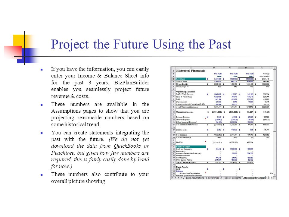 Project the Future Using the Past If you have the information, you can easily enter your Income & Balance Sheet info for the past 3 years, BizPlanBuilder enables you seamlessly project future revenue & costs.