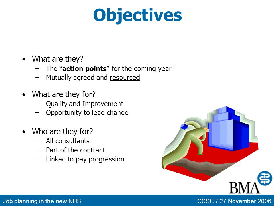Job planning in the new NHSCCSC / 27 November 2006 Objectives What are they? –The action points for the coming year –Mutually agreed and resourced Wha