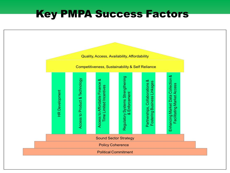 18 Key PMPA Success Factors