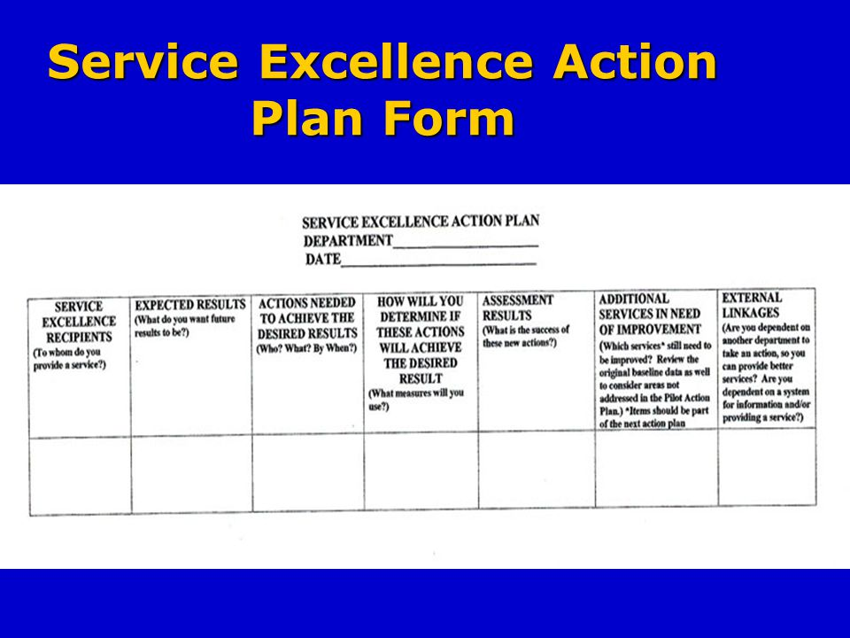 Service Excellence Action Plan Form