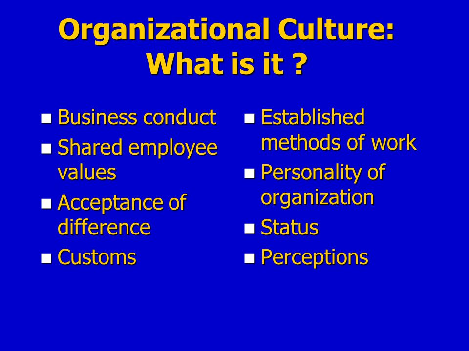 Organizational Culture: What is it ? Business conduct Business conduct Shared employee values Shared employee values Acceptance of difference Acceptan