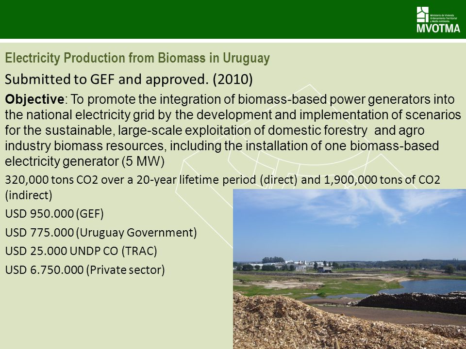 Electricity Production from Biomass in Uruguay Submitted to GEF and approved.