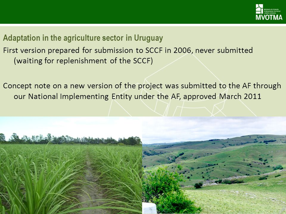 Adaptation in the agriculture sector in Uruguay First version prepared for submission to SCCF in 2006, never submitted (waiting for replenishment of t