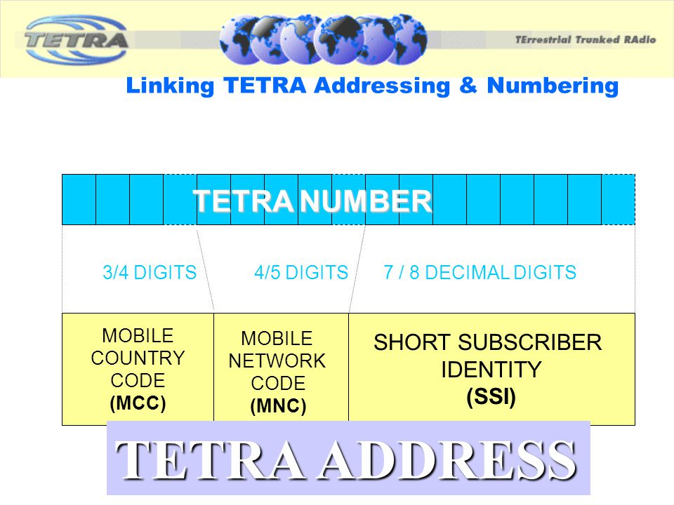 How many numbers for a TETRA Terminal.