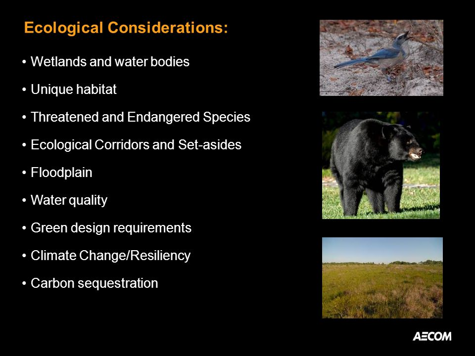 Ecological Considerations: Wetlands and water bodies Unique habitat Threatened and Endangered Species Ecological Corridors and Set-asides Floodplain W