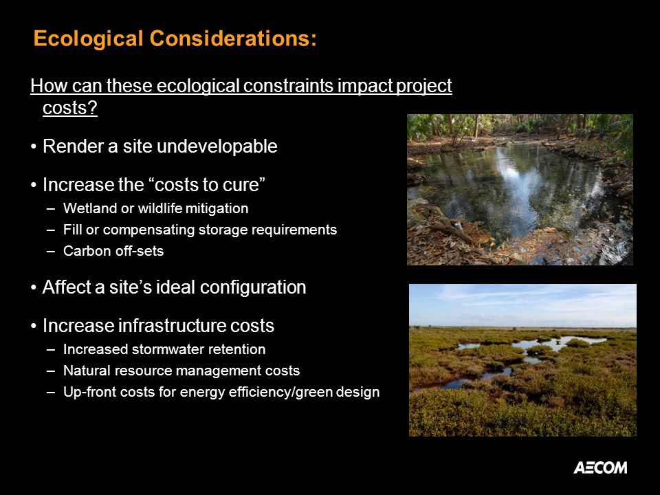Ecological Considerations: How can these ecological constraints impact project costs? Render a site undevelopable Increase the costs to cure –Wetland