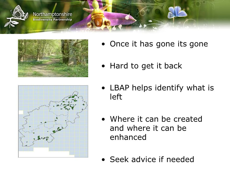Once it has gone its gone Hard to get it back LBAP helps identify what is left Where it can be created and where it can be enhanced Seek advice if needed