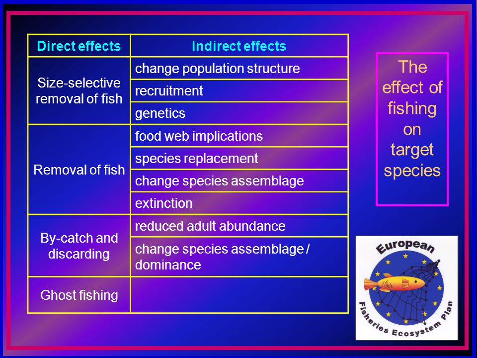 The effect of fishing on target species Direct effectsIndirect effects Size-selective removal of fish change population structure recruitment genetics Removal of fish food web implications species replacement change species assemblage extinction By-catch and discarding reduced adult abundance change species assemblage / dominance Ghost fishing