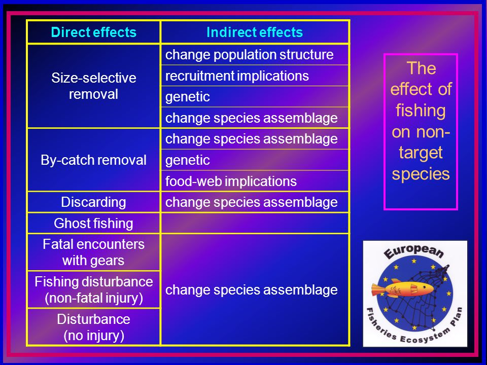 The effect of fishing on non- target species Direct effectsIndirect effects Size-selective removal change population structure recruitment implications genetic change species assemblage By-catch removal change species assemblage genetic food-web implications Discardingchange species assemblage Ghost fishing Fatal encounters with gears change species assemblage Fishing disturbance (non-fatal injury) Disturbance (no injury)