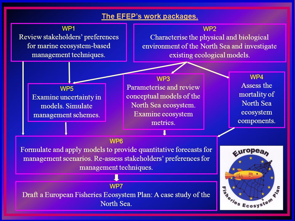 WP1 Review stakeholders preferences for marine ecosystem-based management techniques.