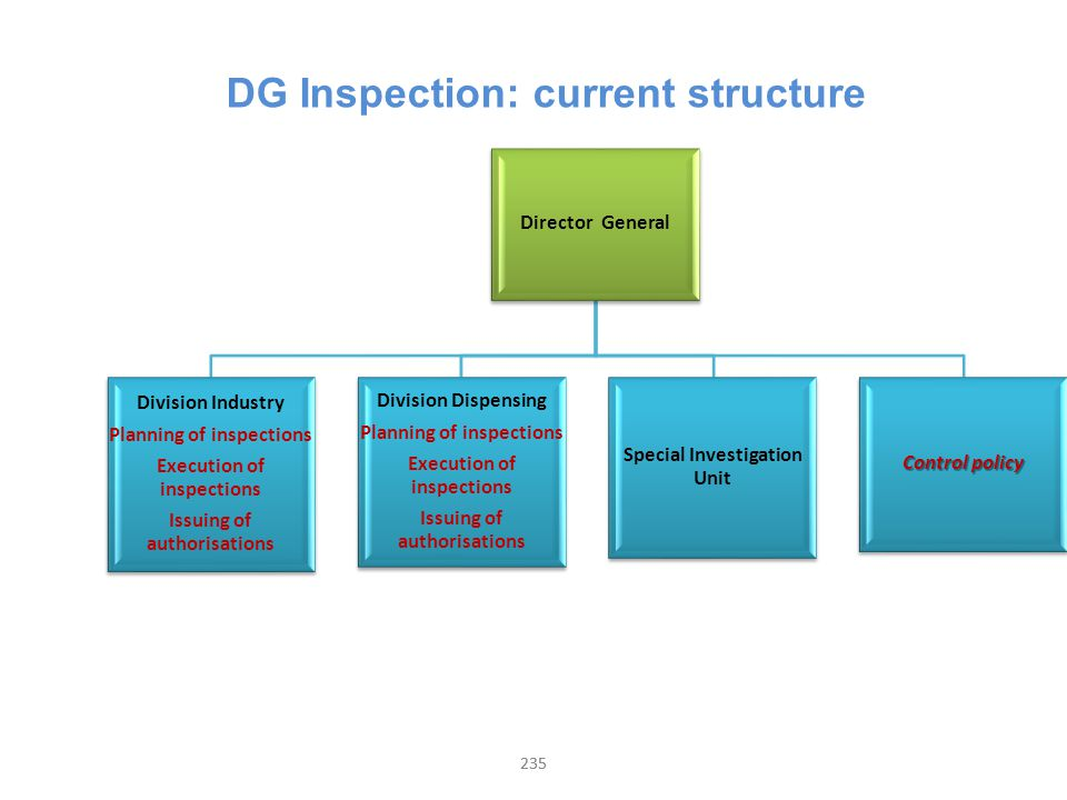 235 DG Inspection: current structure Director General Division Industry Planning of inspections Execution of inspections Issuing of authorisations Div