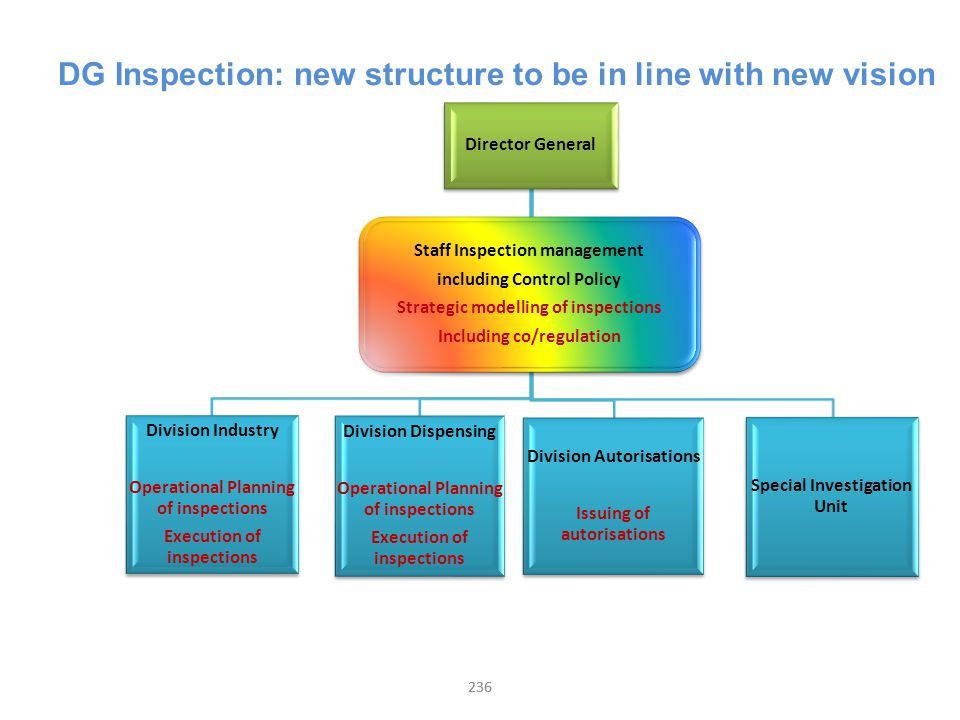 236 DG Inspection: new structure to be in line with new vision Director General Division Industry Operational Planning of inspections Execution of ins