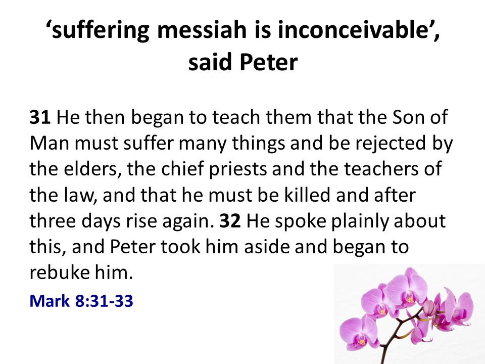 suffering messiah is inconceivable, said Peter 31 He then began to teach them that the Son of Man must suffer many things and be rejected by the elders, the chief priests and the teachers of the law, and that he must be killed and after three days rise again.