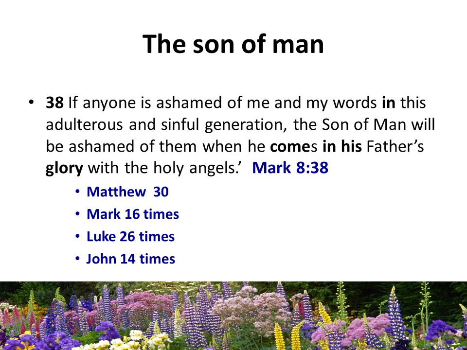 The son of man 38 If anyone is ashamed of me and my words in this adulterous and sinful generation, the Son of Man will be ashamed of them when he comes in his Fathers glory with the holy angels.