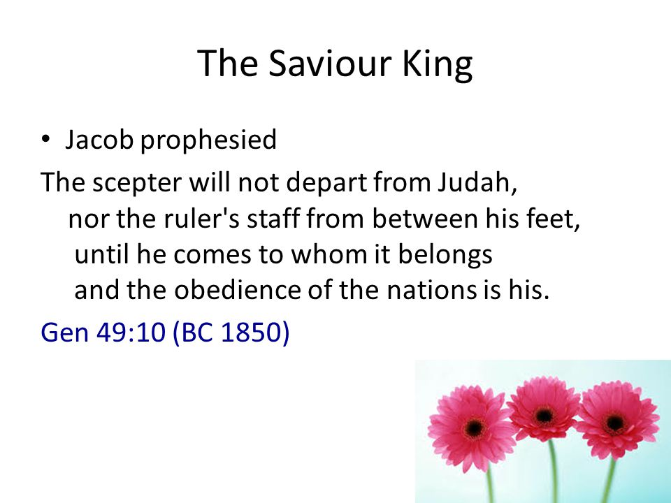 The Saviour King Jacob prophesied The scepter will not depart from Judah, nor the ruler s staff from between his feet, until he comes to whom it belongs and the obedience of the nations is his.