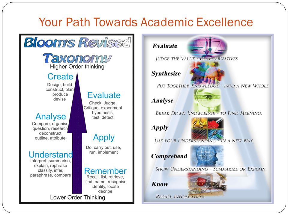 Your Path Towards Academic Excellence