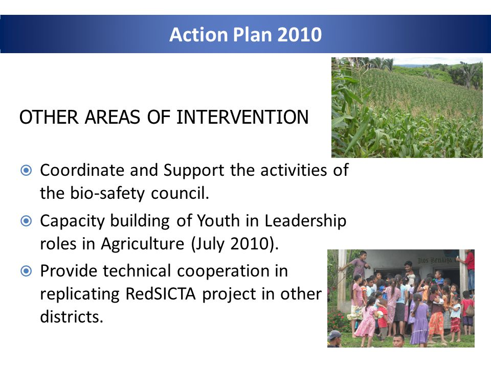 OTHER AREAS OF INTERVENTION Coordinate and Support the activities of the bio-safety council.