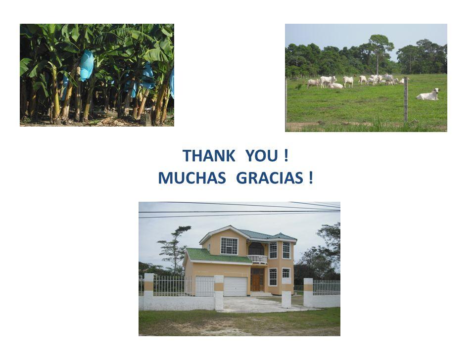 THANK YOU ! MUCHAS GRACIAS !