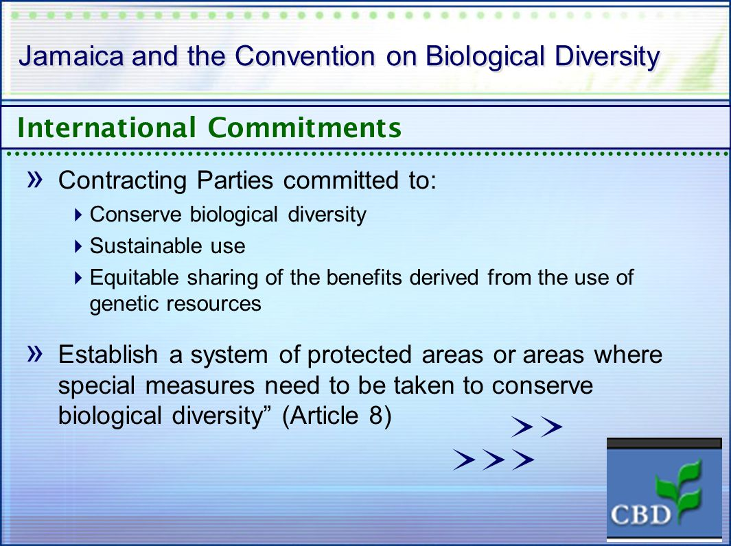 Jamaica and the Convention on Biological Diversity » Contracting Parties committed to: Conserve biological diversity Sustainable use Equitable sharing of the benefits derived from the use of genetic resources » Establish a system of protected areas or areas where special measures need to be taken to conserve biological diversity (Article 8) International Commitments