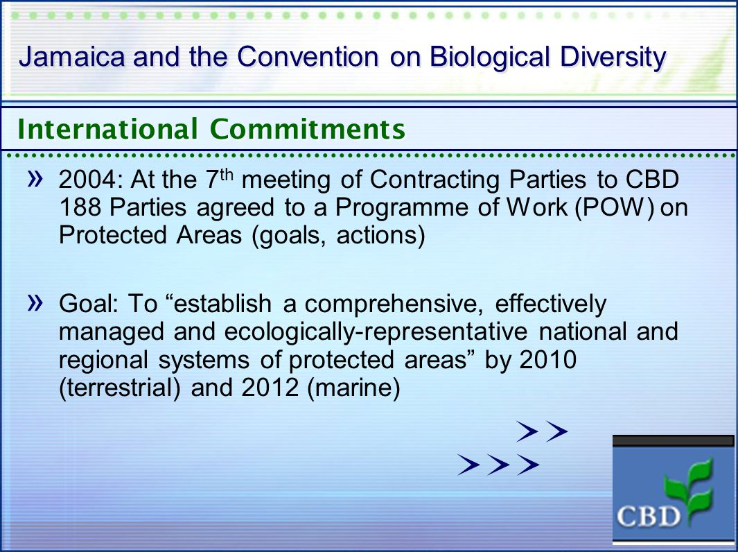 Jamaica and the Convention on Biological Diversity » 2004: At the 7 th meeting of Contracting Parties to CBD 188 Parties agreed to a Programme of Work (POW) on Protected Areas (goals, actions) » Goal: To establish a comprehensive, effectively managed and ecologically-representative national and regional systems of protected areas by 2010 (terrestrial) and 2012 (marine) International Commitments