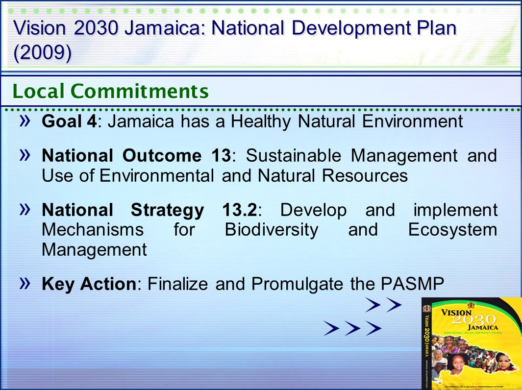Vision 2030 Jamaica: National Development Plan (2009) » Goal 4: Jamaica has a Healthy Natural Environment » National Outcome 13: Sustainable Management and Use of Environmental and Natural Resources » National Strategy 13.2: Develop and implement Mechanisms for Biodiversity and Ecosystem Management » Key Action: Finalize and Promulgate the PASMP Local Commitments