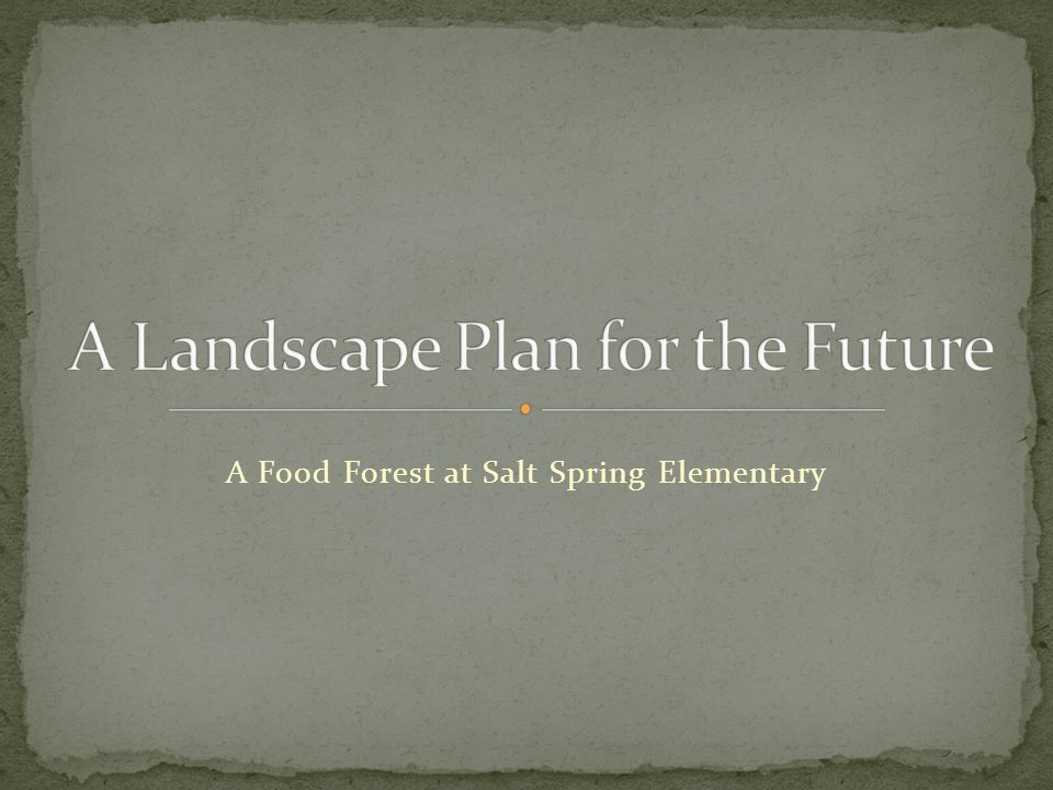 A Food Forest at Salt Spring Elementary