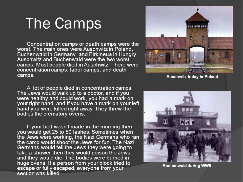 The Camps Concentration camps or death camps were the worst. The main ones were Auschwitz in Poland, Buchenwald in Germany, and Birkineua in Hungry. A