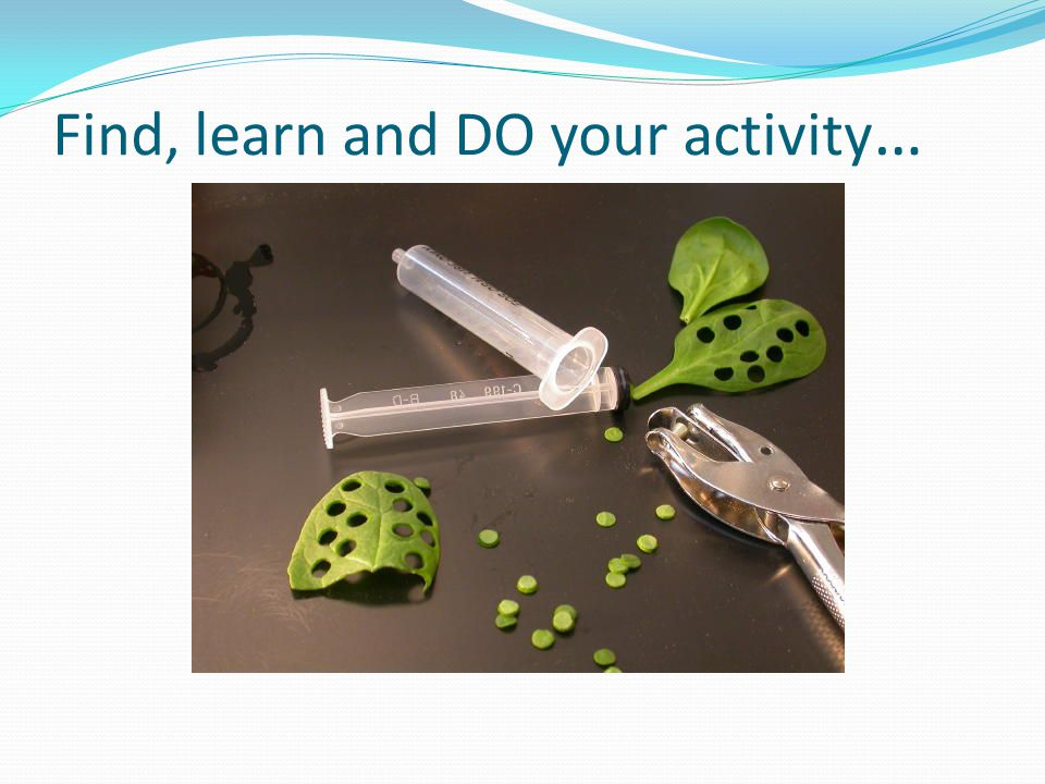 Find, learn and DO your activity …