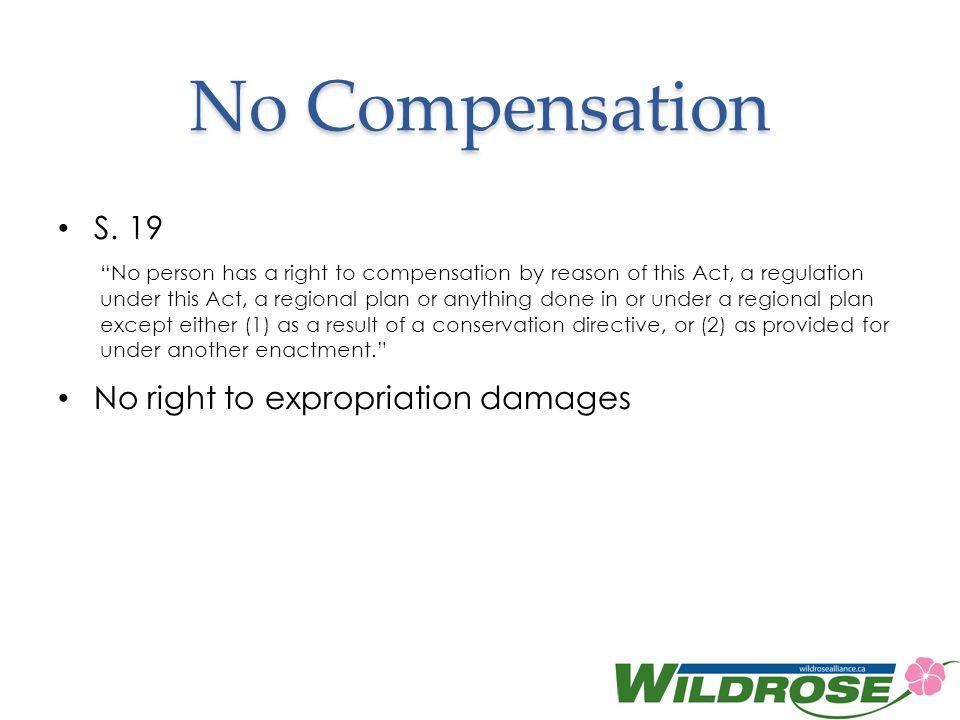 No Compensation S.