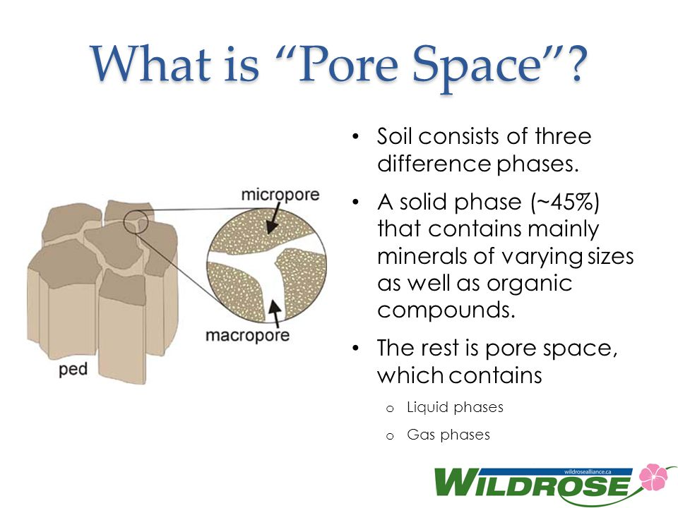 What is Pore Space.Soil consists of three difference phases.