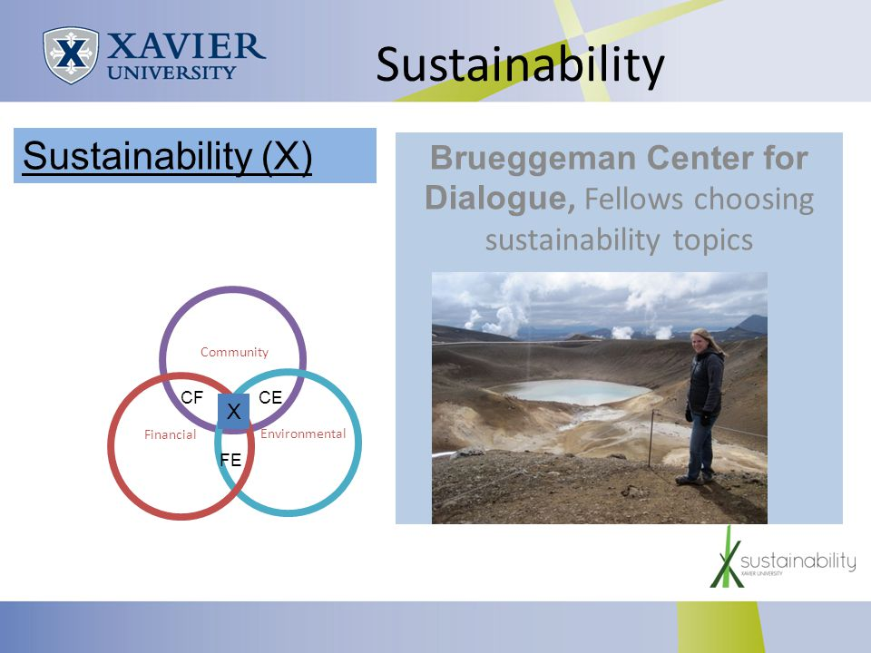Sustainability Brueggeman Center for Dialogue, Fellows choosing sustainability topics Community Environmental Financial CECF FE X Sustainability (X)