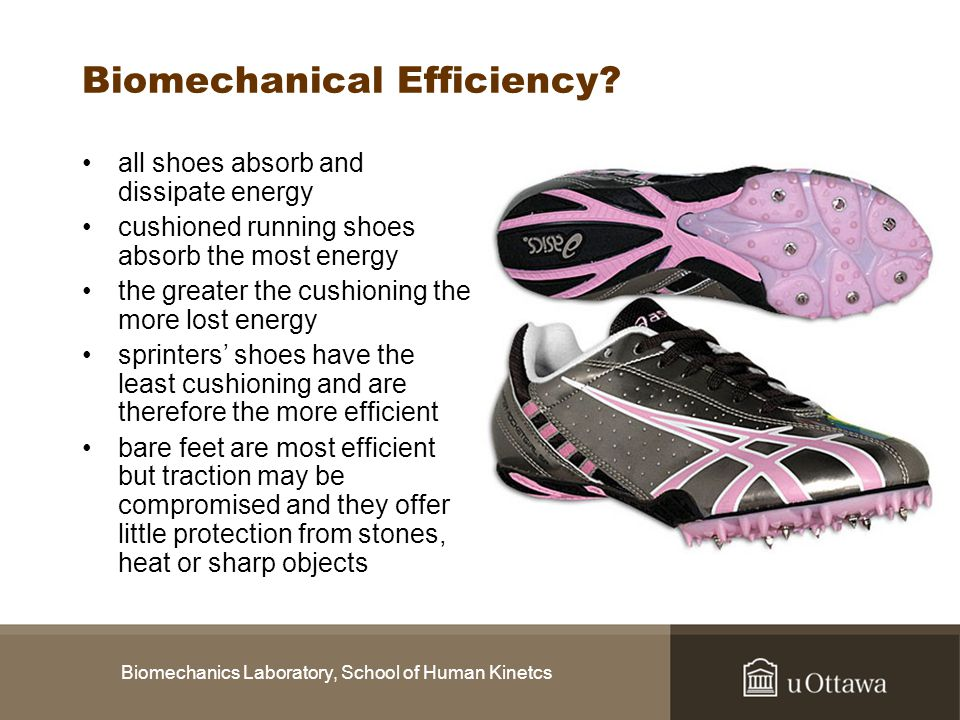 Biomechanics Laboratory, School of Human Kinetcs Biomechanical Efficiency? all shoes absorb and dissipate energy cushioned running shoes absorb the mo