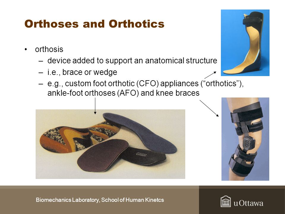 Biomechanics Laboratory, School of Human Kinetcs Orthoses and Orthotics orthosis –device added to support an anatomical structure –i.e., brace or wedg