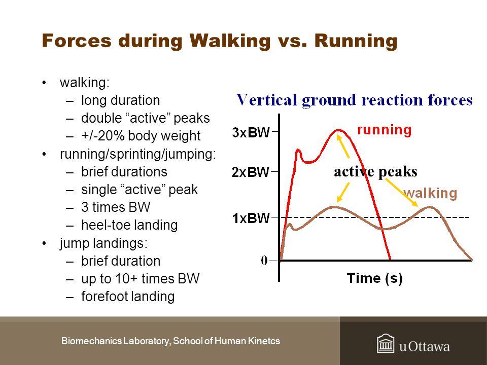 Biomechanics Laboratory, School of Human Kinetcs Forces during Walking vs. Running walking: –long duration –double active peaks –+/-20% body weight ru
