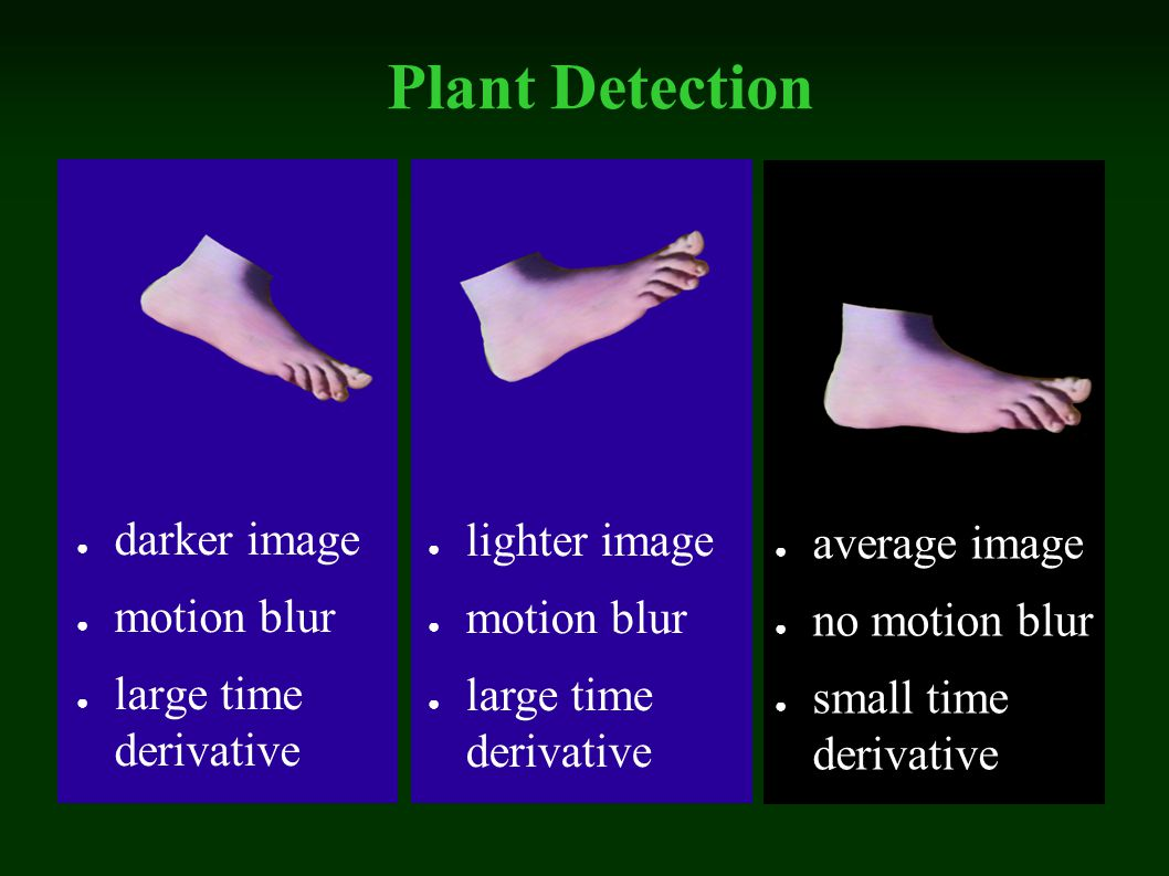 Plant Detection darker image motion blur large time derivative lighter image motion blur large time derivative average image no motion blur small time derivative