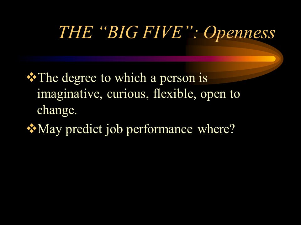 THE BIG FIVE: Openness The degree to which a person is imaginative, curious, flexible, open to change. May predict job performance where?