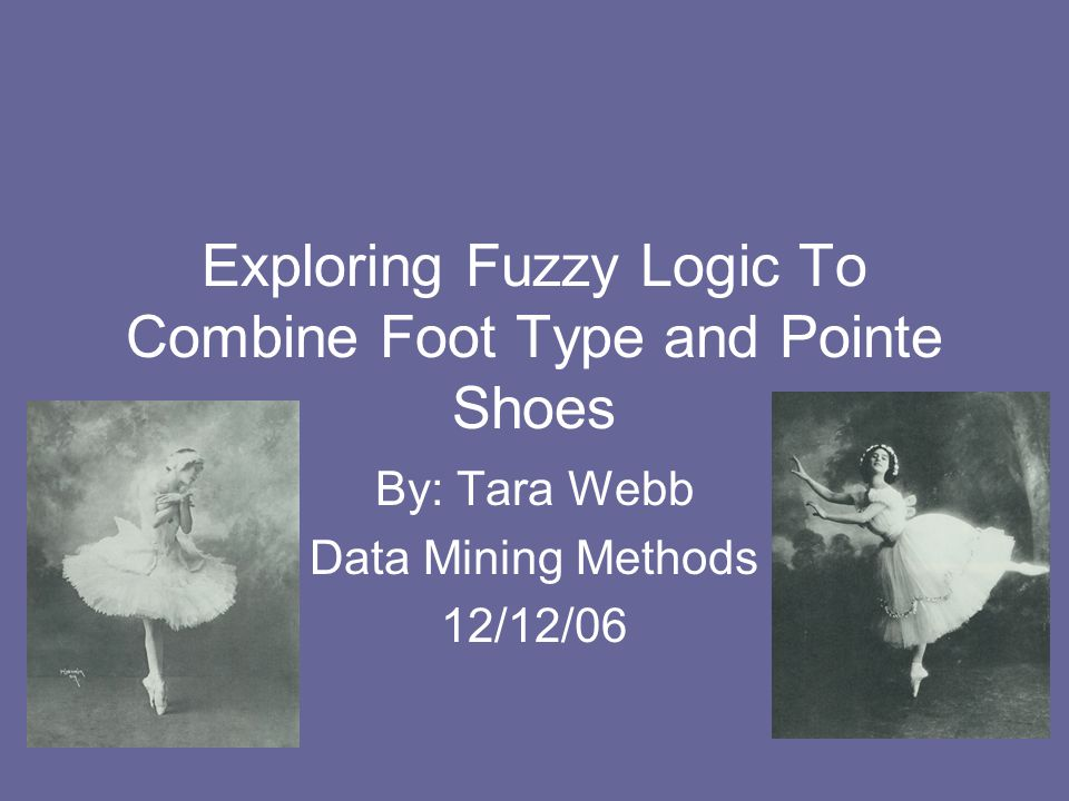 Exploring Fuzzy Logic To Combine Foot Type and Pointe Shoes By: Tara Webb Data Mining Methods 12/12/06