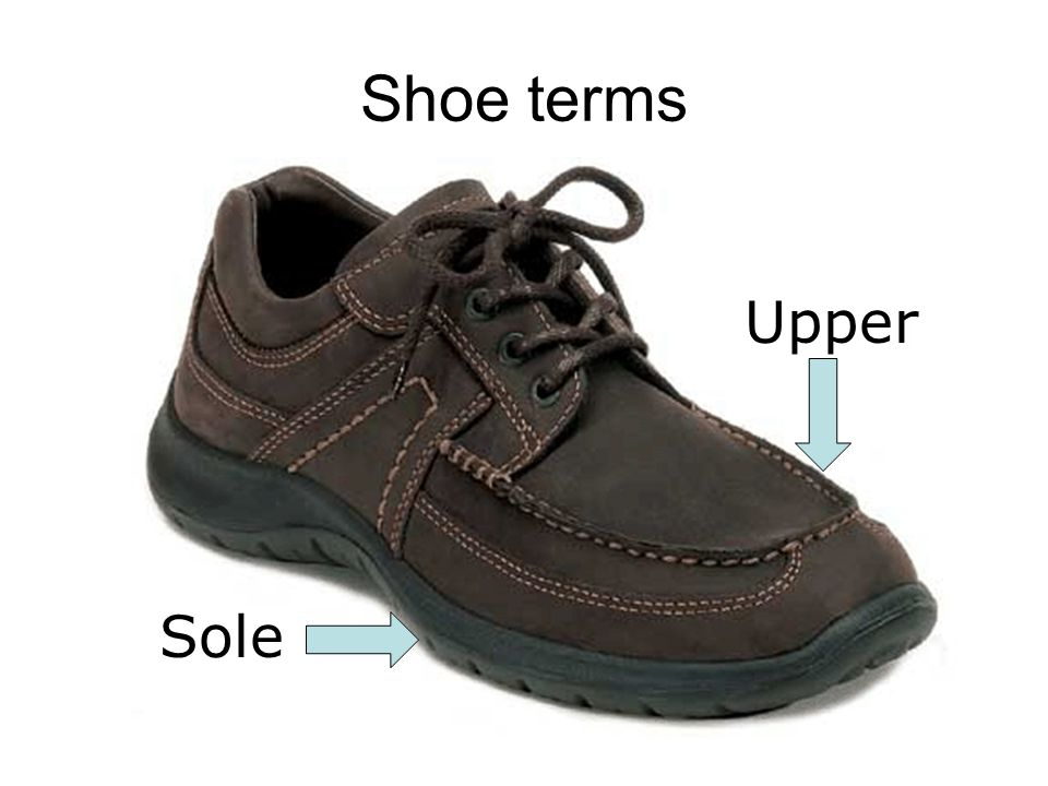 Shoe terms Sole Upper