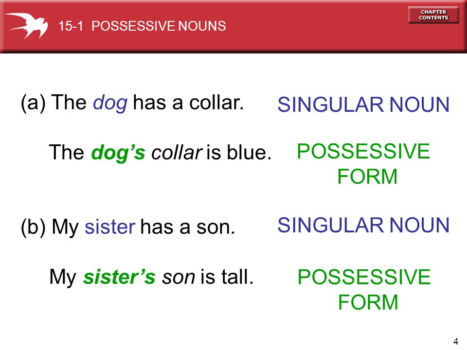 4 (a) The dog has a collar. The dogs collar is blue. (b) My sister has a son. My sisters son is tall. SINGULAR NOUN 15-1 POSSESSIVE NOUNS POSSESSIVE F