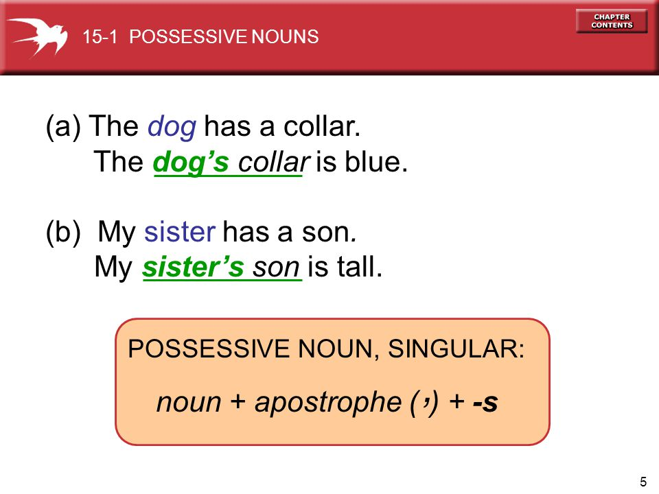 5 (a) The dog has a collar. The dogs collar is blue. (b) My sister has a son. My sisters son is tall. 15-1 POSSESSIVE NOUNS POSSESSIVE NOUN, SINGULAR: