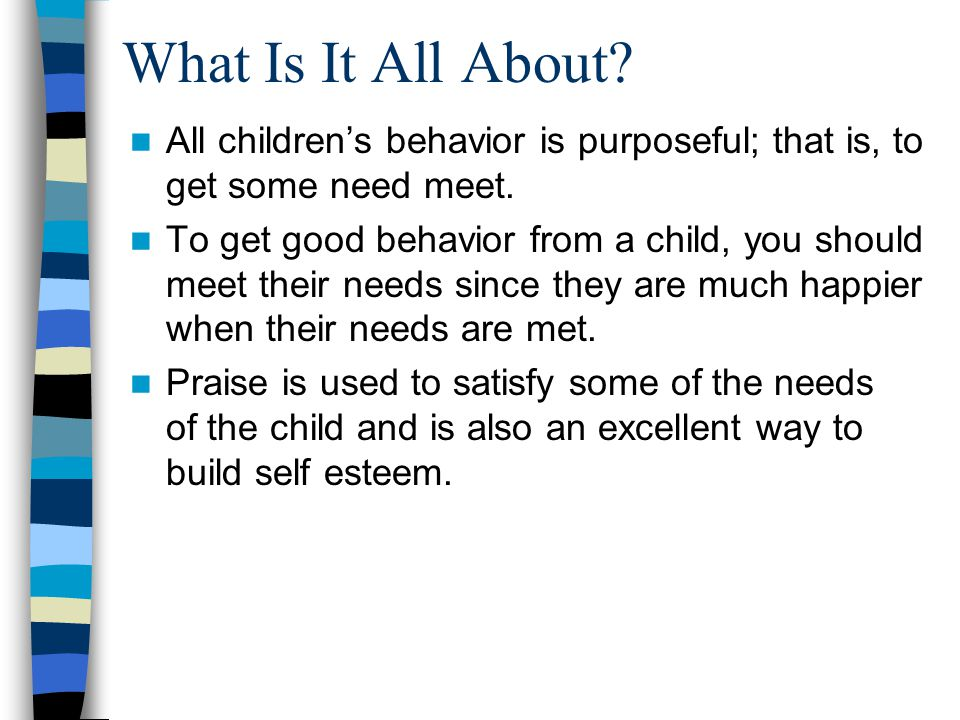 What Is It All About.All childrens behavior is purposeful; that is, to get some need meet.