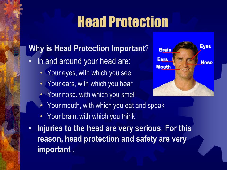 Head Protection Why is Head Protection Important ? In and around your head are: Your eyes, with which you see Your ears, with which you hear Your nose