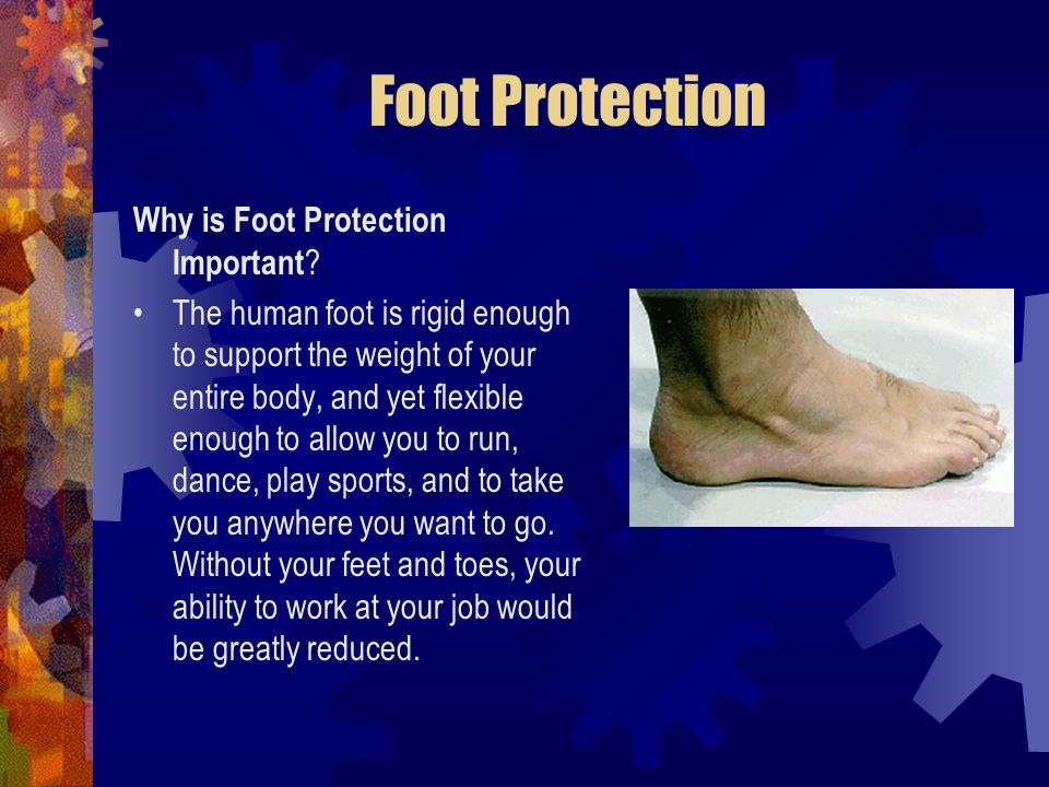Foot Protection Why is Foot Protection Important ? The human foot is rigid enough to support the weight of your entire body, and yet flexible enough t